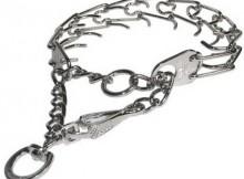 différent type de colliers de dressage