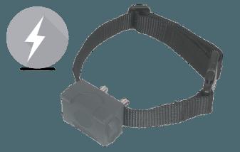 guide collier anti aboiement electrique