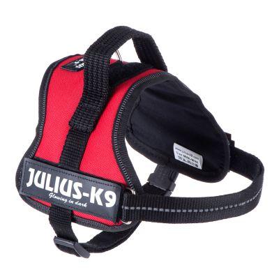 Julius K9 en Promo -39%
