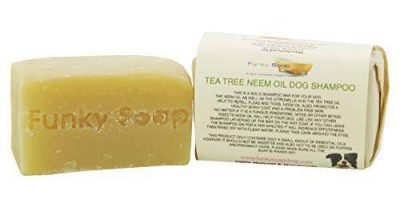 Savon shampoing Funky Soap Tea tree