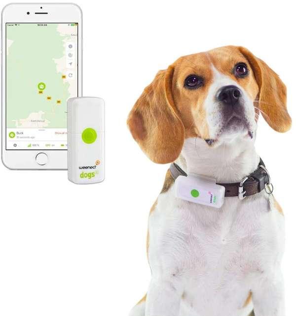 collier GPS weenect en Promo -38%